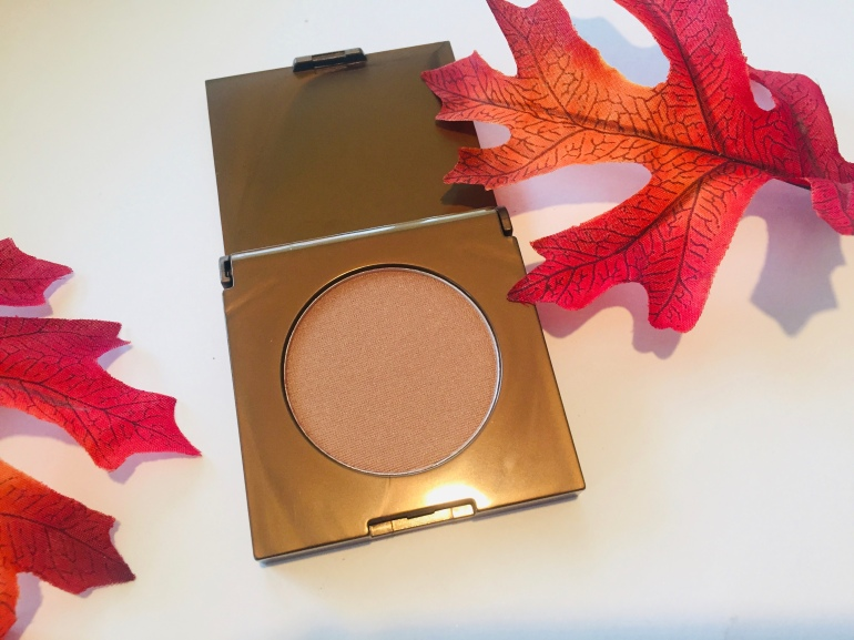 Tarte Amazonian Clay Waterproof Bronzer in Park Ave Princess Review | Tayler's Edit